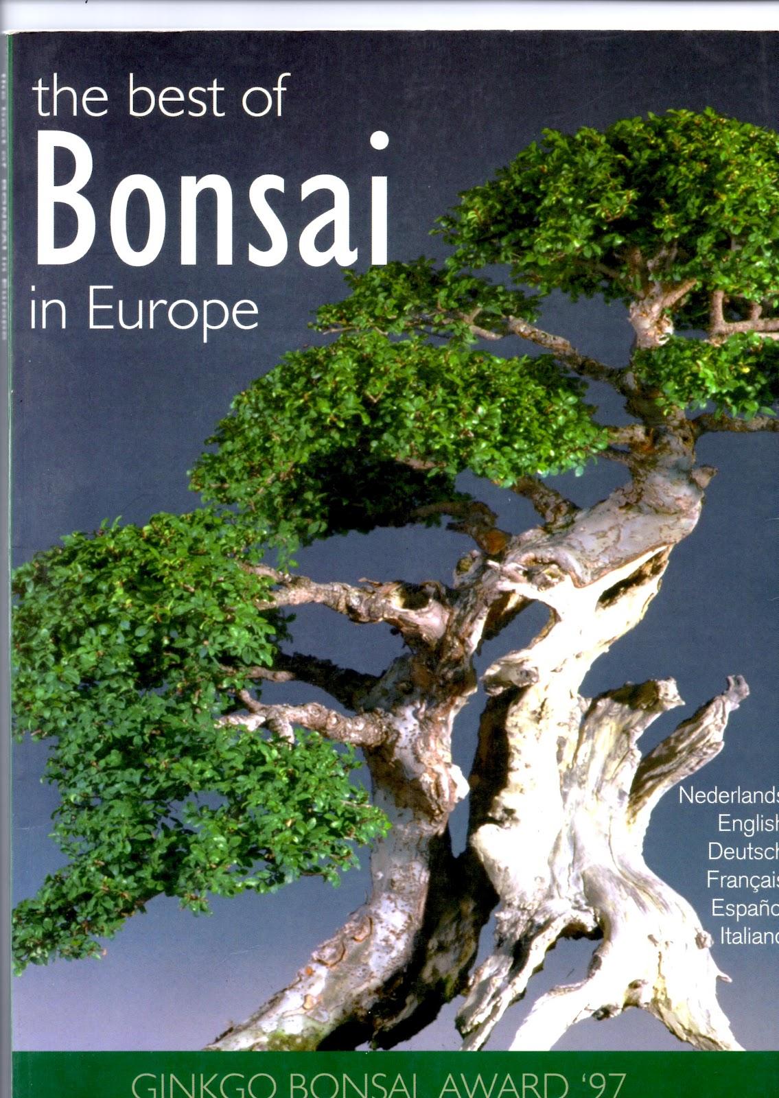 El Tim Bonsai Conozcamos Nuestra Historia 1 1997 I Ginkgo Bonsai