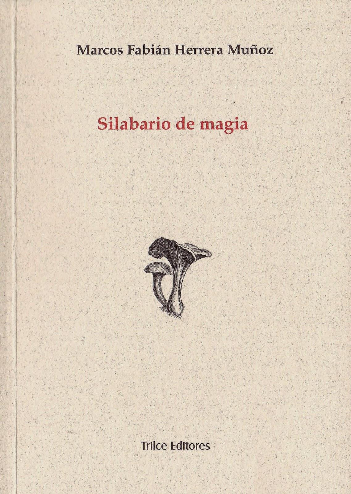 Marcos Fabián Herrera - Músicos   Poetas Colombianos - E SánchezNieto -