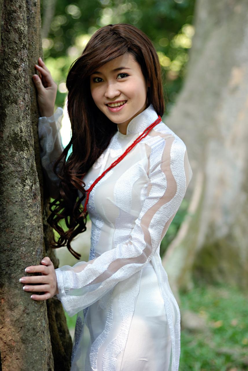 Excellent ChineseVietnamese Traditional Dress  Stephaniekluong