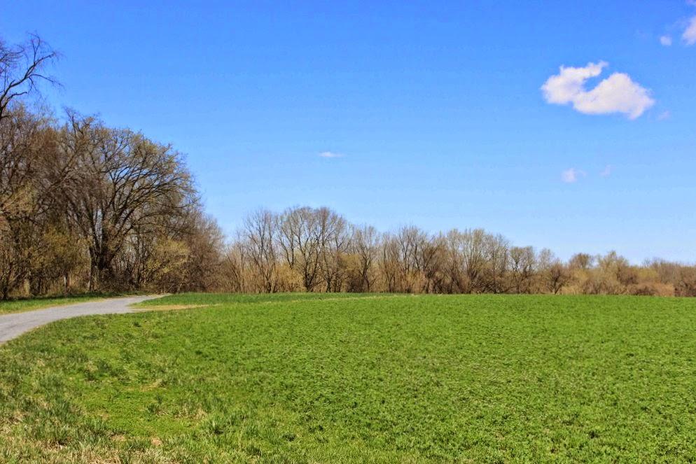 thomas farm loop trail