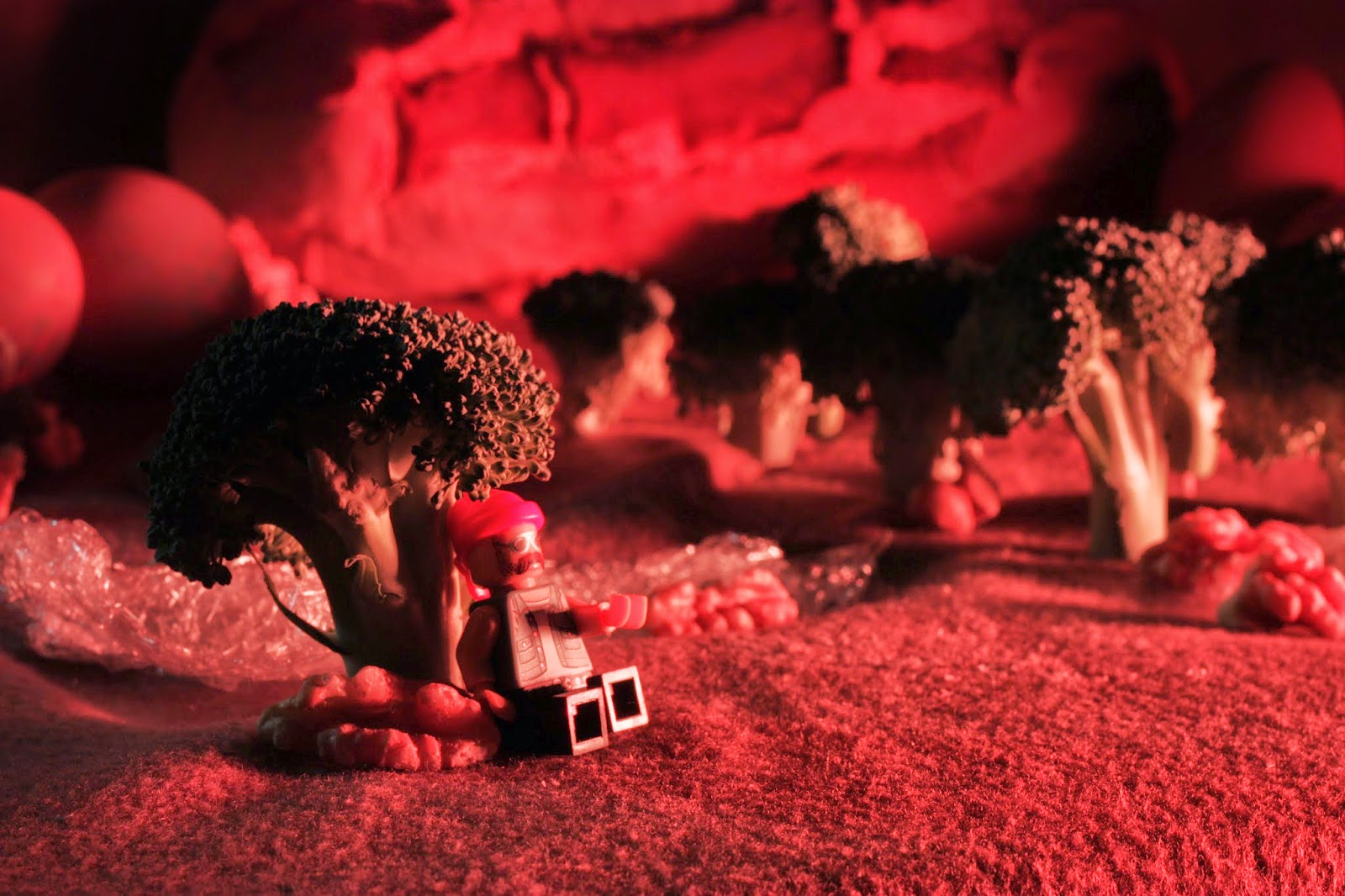 Lego man sitting next to a broccoli tree with egg and bread hills behind. All under a red light.