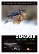 OLHARES NA NATUREZA - LISBOA