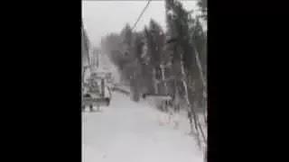Ель падает на подъёмник в Буковели