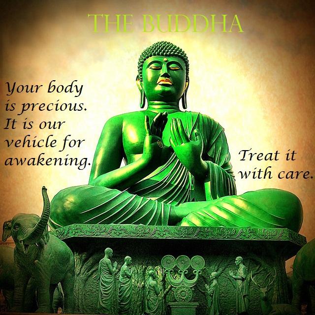 lord buddha quotes quotesgram