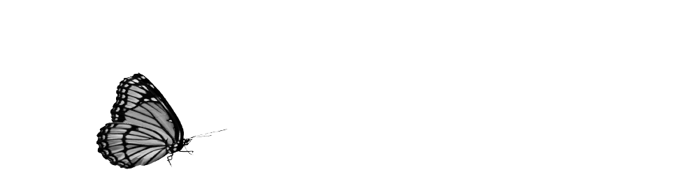 A Borboleta que Lê - The Butterfly Reads