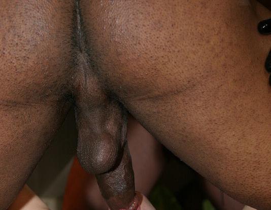 brian pumper licking ass