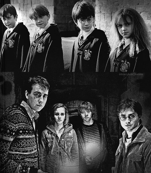 harry potter and deathly hallows_11. HARRY POTTER MEMORIES - THE