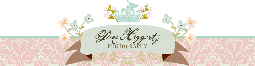 Dina Haggerty Photography