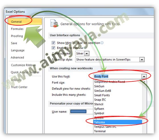 Gambar: Cara merubah font default di microsoft excel 2010
