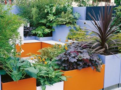 jardim caixas com plantas