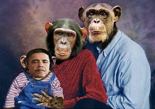 Foto Rasis Keluarga Barack Obama Jadi Seekor Anak Monyet, kera, atau gorila - the facemash post
