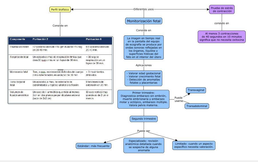Eduardo Redondo Ginecología UAS 2015: Monitorización y Doppler fetal