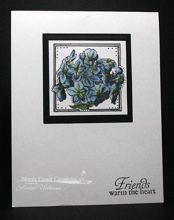 Stamps - North Coast Creations Floral Sentiments 6