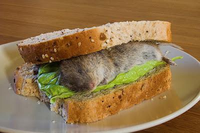 tikus dalam roti