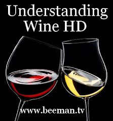 Understanding Wine Podcast