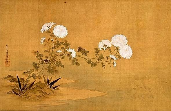 Risultati immagini per crisantemo dorato
