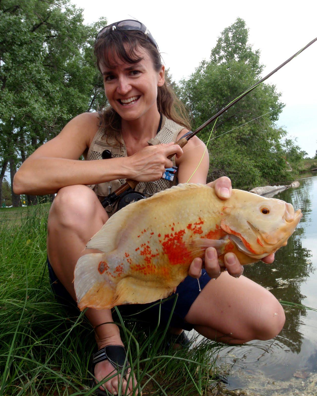 http://2.bp.blogspot.com/-TE0pl1SL1FA/Tg5trwbkbCI/AAAAAAAAC5o/F1gOQDxvD9Y/s1600/Eva+Zimmerman+Fly+Fishing+Colorado+Albino+Oscar+1+%252829+June+2011%2529.jpg