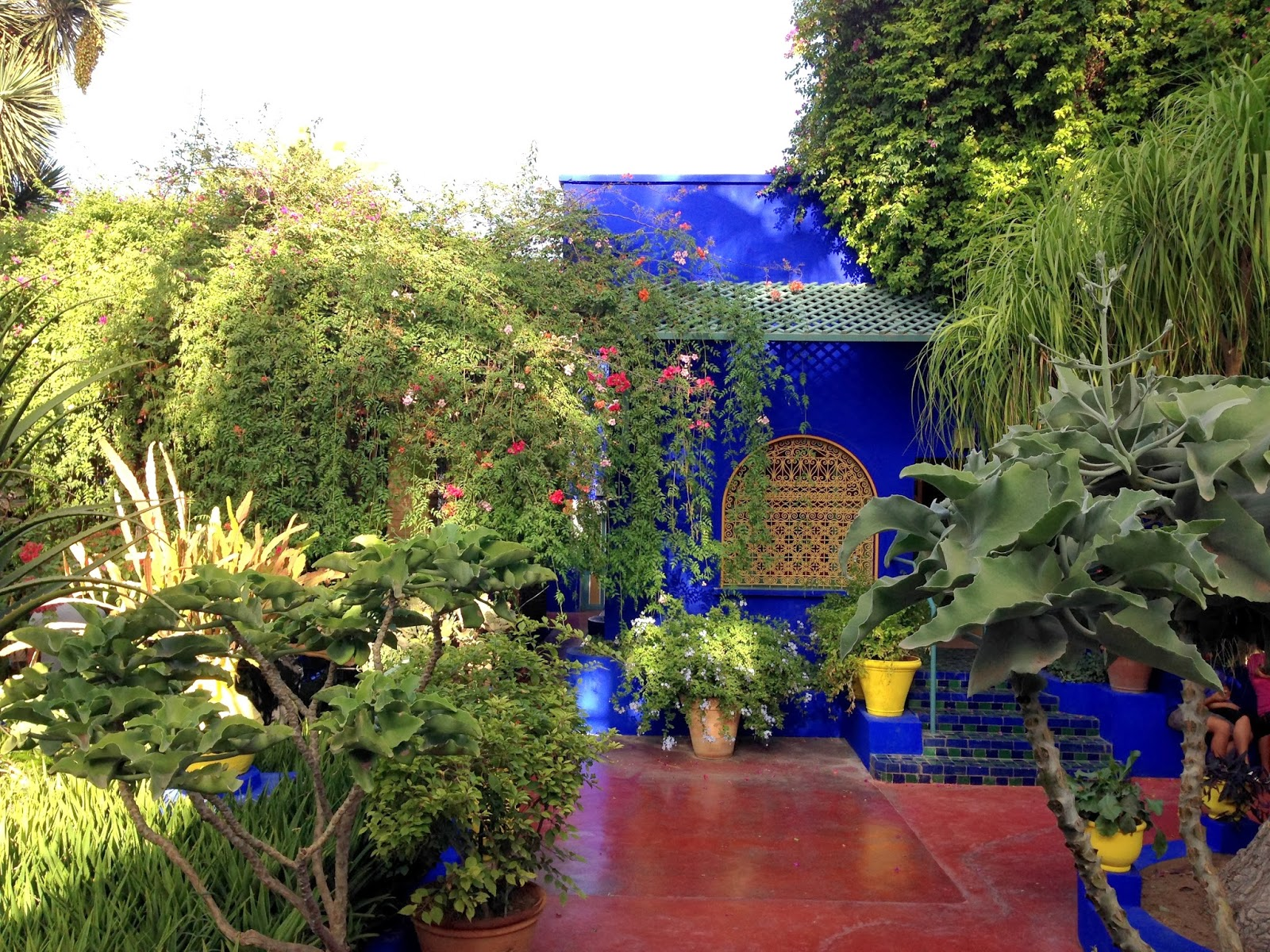 Lisa marrakech jardin majorelle for Jardin majorelle