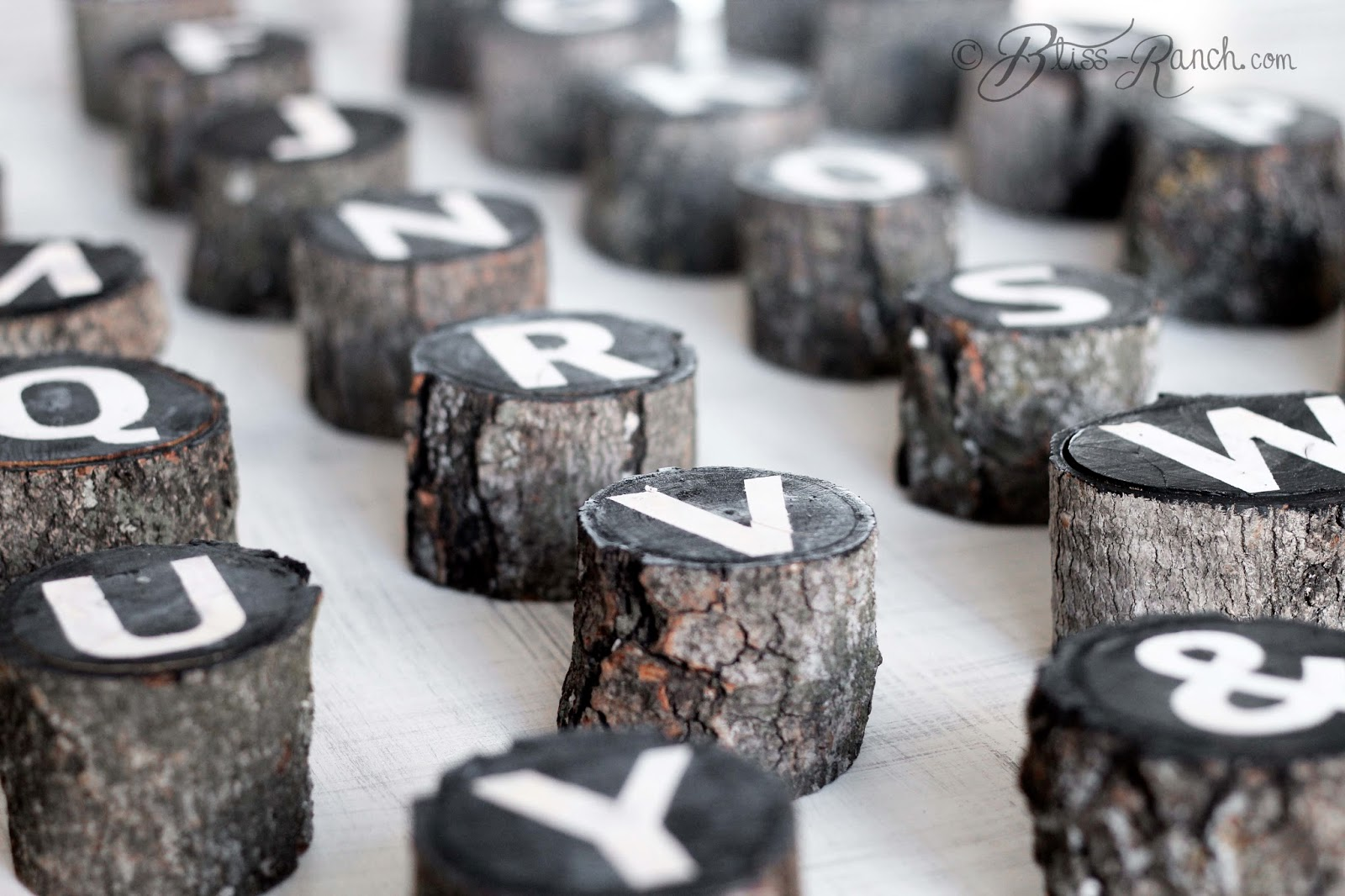 Tree Branch Alphabet Art Bliss-Ranch.com