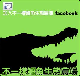 加入facebook