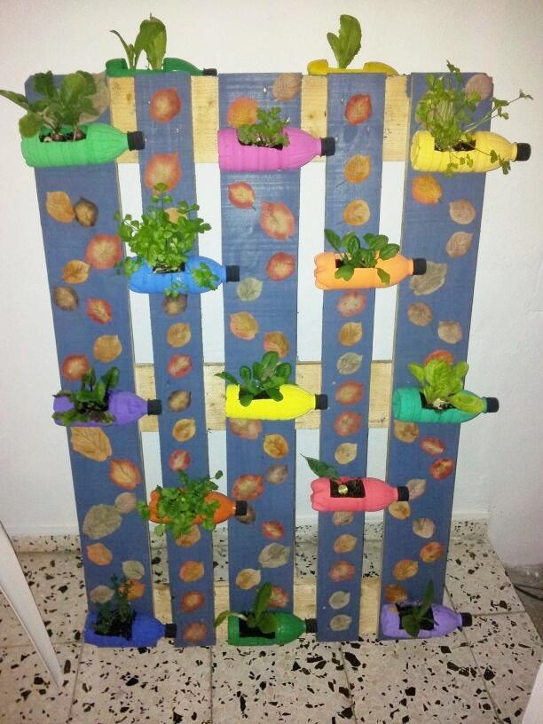 caixon dos retais: ¡Haz tu propio huerto vertical con material