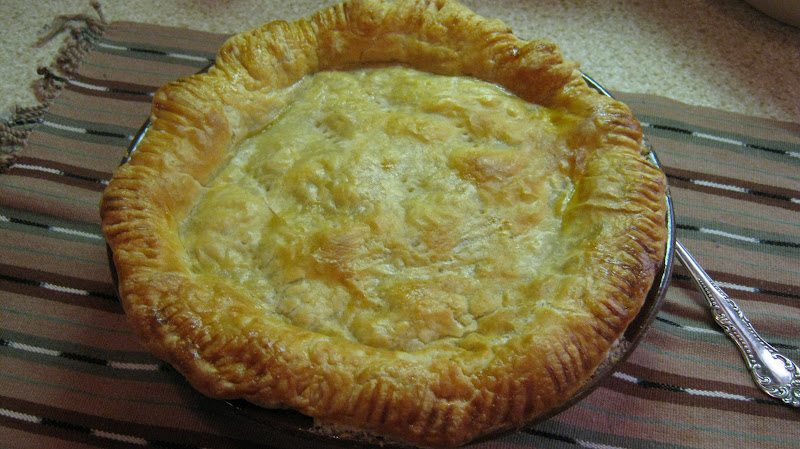 double crust chicken pot pie this is a lot like my mama s chicken pot ...