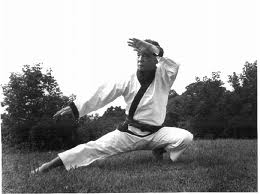 Traditional taekwondo ramblings moo duk kwan taekwondos forgotten founding masters of that organisation in that he was involved in talks of organising the different kwan in pusan during the korean war but he founded his fandeluxe Choice Image