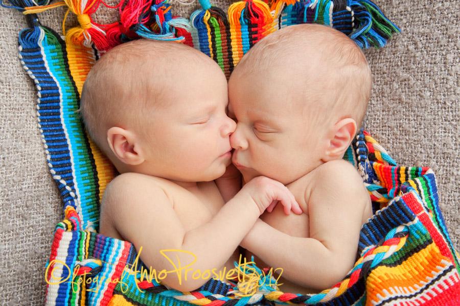 kaksikud-beebid-kotis-portree