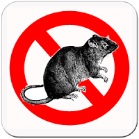 Cara Mengusir Tikus Dengan HP Android
