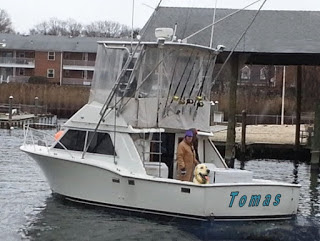 Tomas, il cane mascotte dei pescatori siciliani