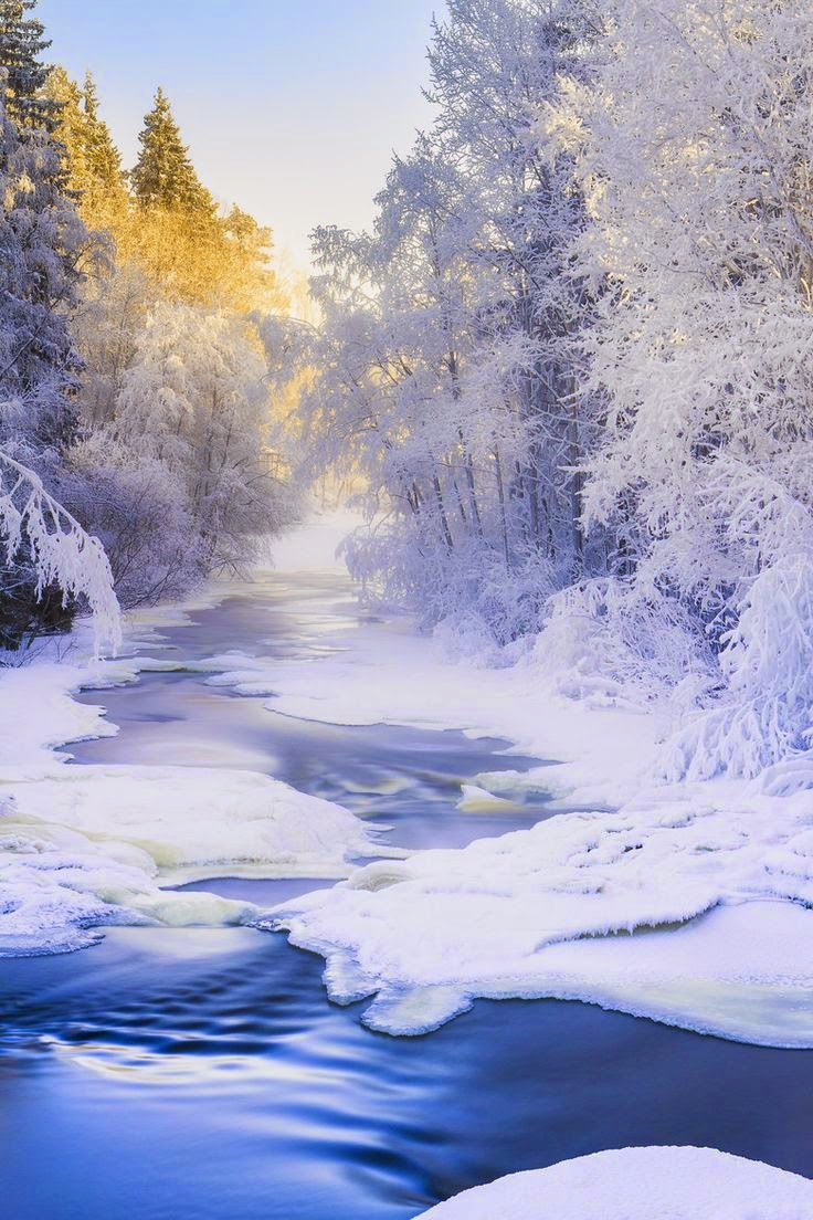 Affordable family vacation ideas dreamy nature for Family winter vacation ideas