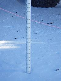 Alpine Snow Stick
