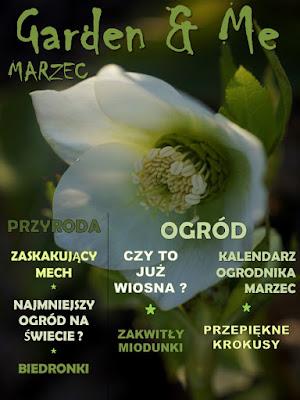 http://issuu.com/wilczagora/docs/garden___me_3