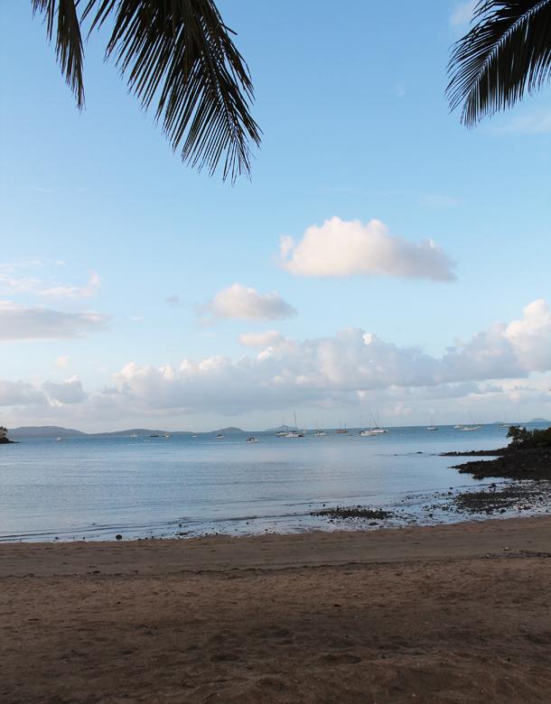 Sweet Monday, Airlie Beach, Queensland, Australia