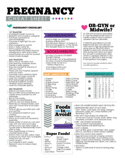 Pregnancy, Printable, Journal, Pregnancy Checklist, Pregnancy Cheat Sheet, Pregnancy Binder, Pregnancy Journal
