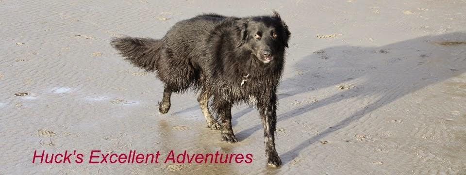 Huck's Excellent Adventures