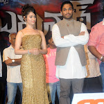 Allu Arjun Badrinath Movie Audio Launch Stills
