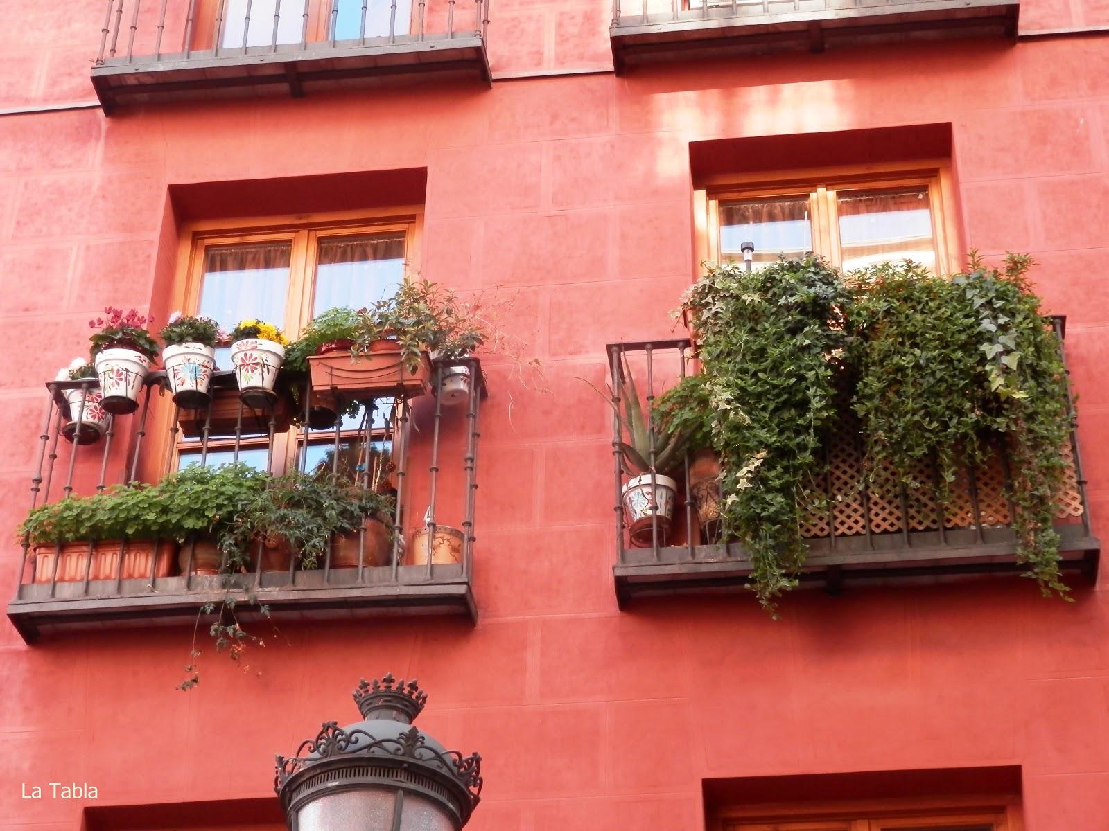 Madrid plantas en el balc n y al fondo hay sitio - Plantas de balcon ...