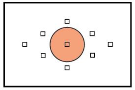 contoh Spot metering kamera analog
