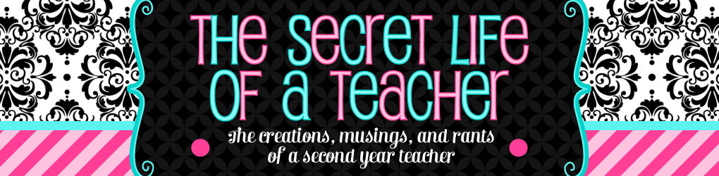 The Secret Life of A Teacher
