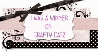 Winner on Crafty Catz