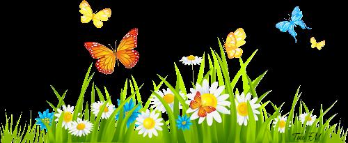 thelma menezes marcadores barrinha divisória jardim barrinhas jardim