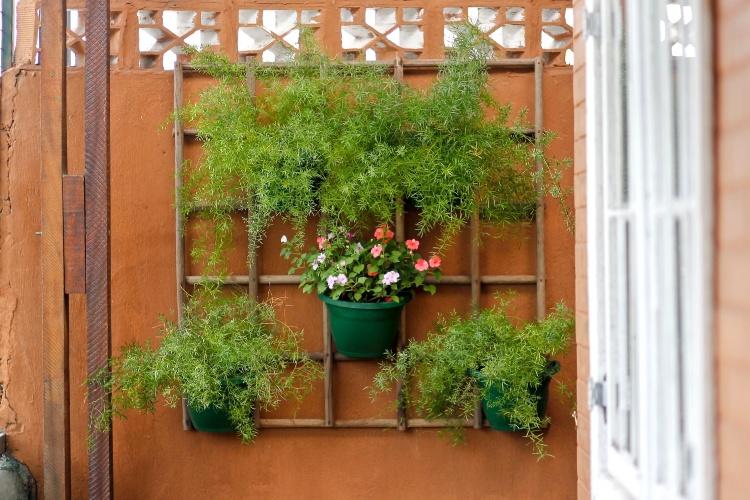jardim vertical na sala : jardim vertical na sala:Plantas Para Jardim Vertical