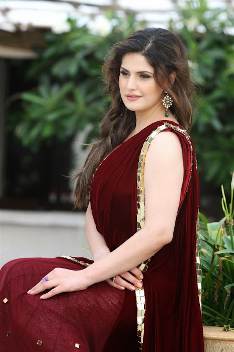zarine khan glamorous in saree photo gallery