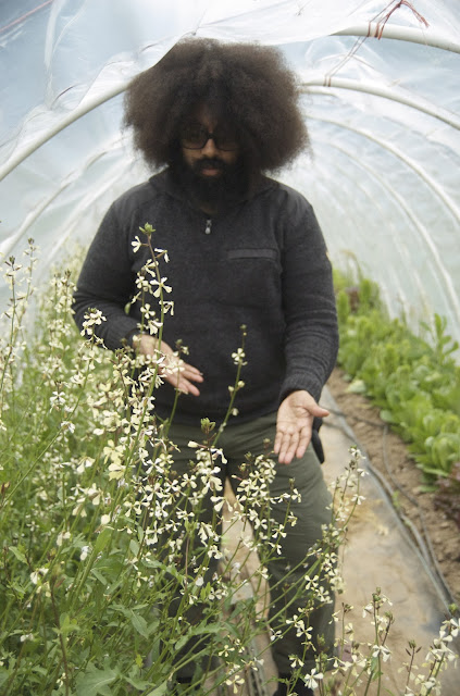 Reggie Watts arugula Farm to Artist