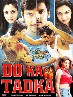 Do Ka Tadka (2014) Watch Online Full Movie Free Download HD