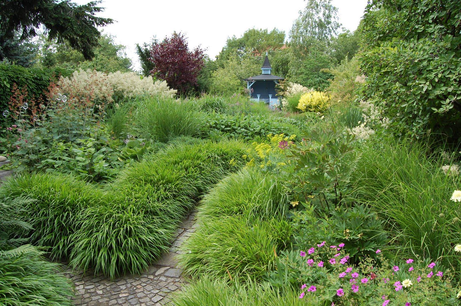 Noel's Garden Blog: July 2011