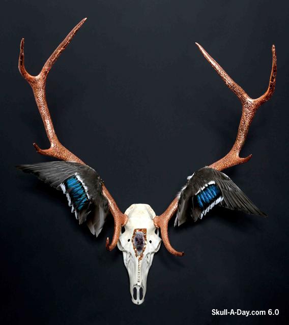 Antlers Painted On Wood