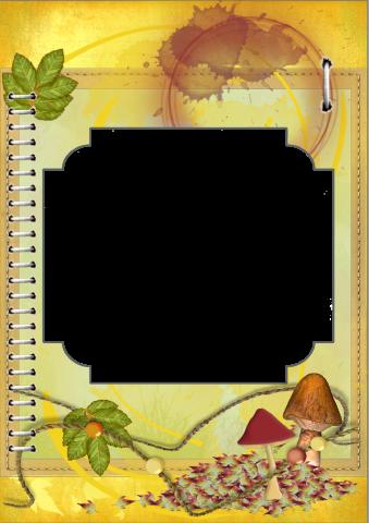 Oct. 2016 Bonus Q - page small