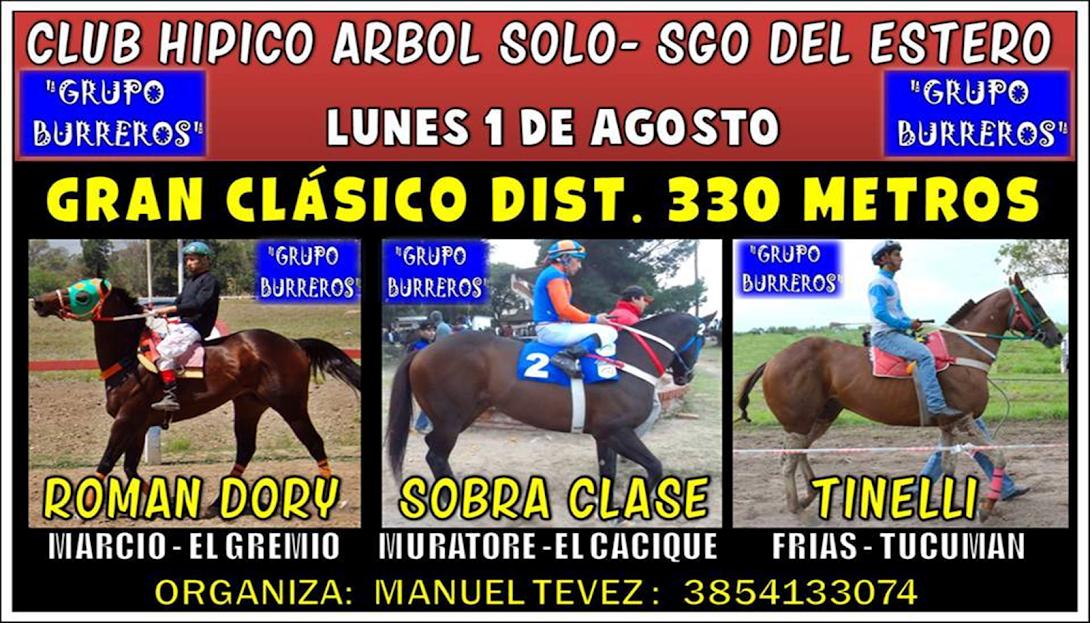 1-08-16-HIP. ARBOL SOLO-CLAS.